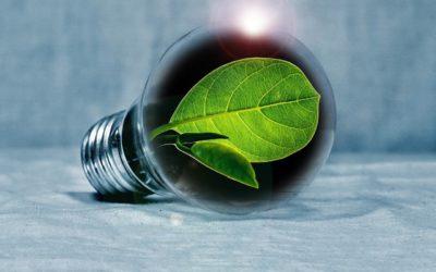 Zielona energia naobszarze transgranicznym